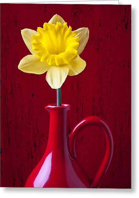 Pitcher Greeting Cards - Daffodil In Red Pitcher Greeting Card by Garry Gay