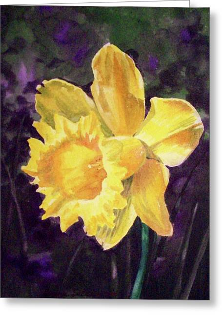 Daffodil Greeting Cards - Daffodil Greeting Card by Irina Sztukowski