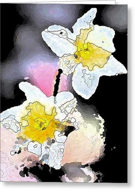 Pamela Cooper Greeting Cards - Daffodils 6 Greeting Card by Pamela Cooper