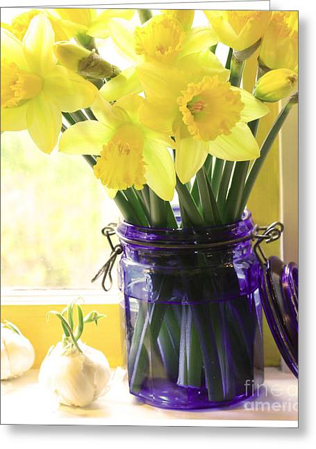 Blue Jar Greeting Cards - Daffodils in blue glass Greeting Card by Margaret Hood