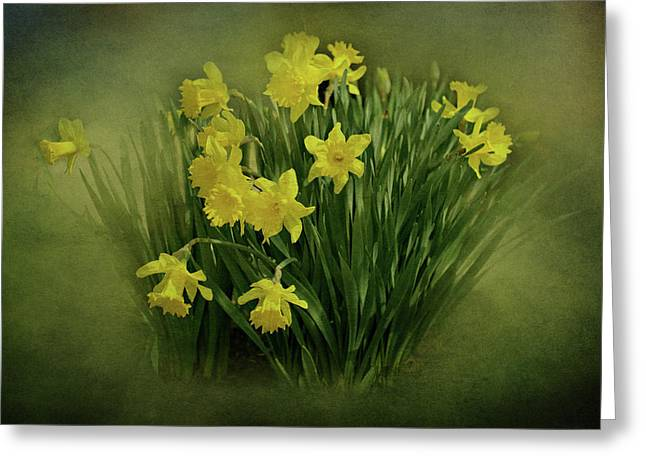 Indiana Springs Digital Art Greeting Cards - Daffodils Greeting Card by Sandy Keeton