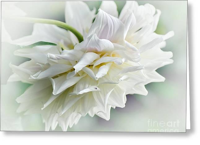 Rhythmic Greeting Cards - Dahlia and Sunshine Greeting Card by Kaye Menner