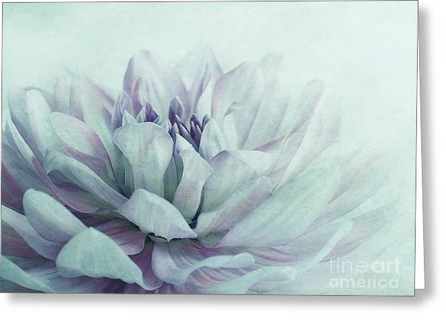 Dahlias Greeting Cards - Dahlia Greeting Card by Priska Wettstein