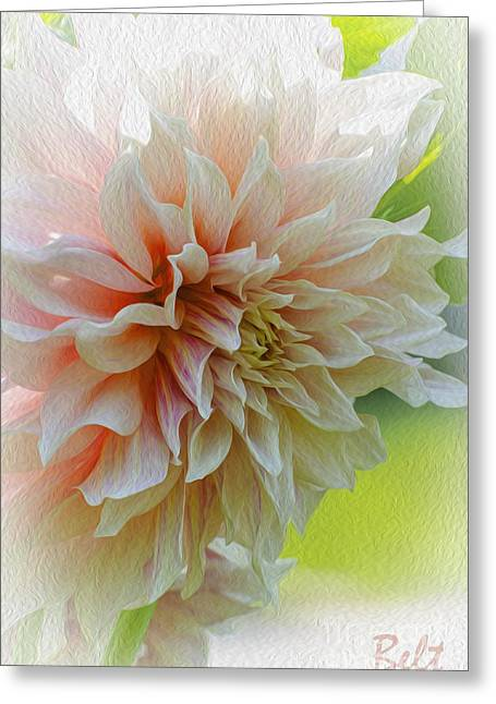 Floral Artist Greeting Cards - Dahlia Waves Greeting Card by Christine Belt