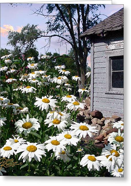 Barn Digital Greeting Cards - Daises Delight II Greeting Card by Doug Kreuger