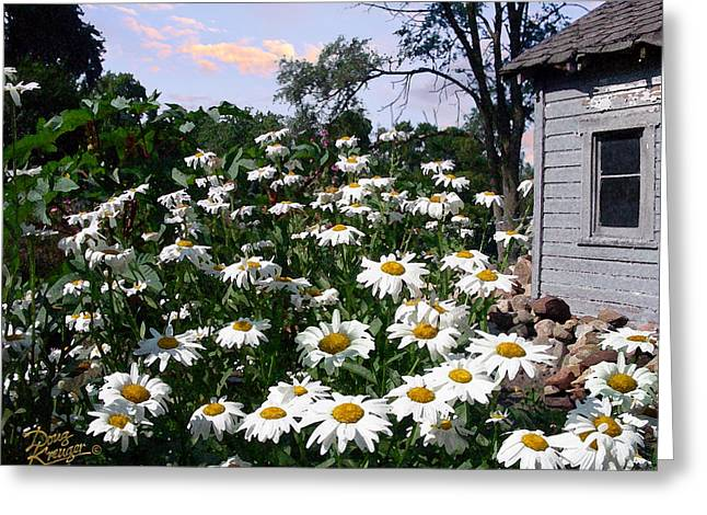 Garden Shen Greeting Cards - Daisies Delight Greeting Card by Doug Kreuger