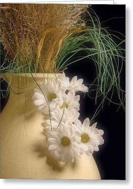 Gerber Greeting Cards - Daisies on the side Greeting Card by Tom Mc Nemar