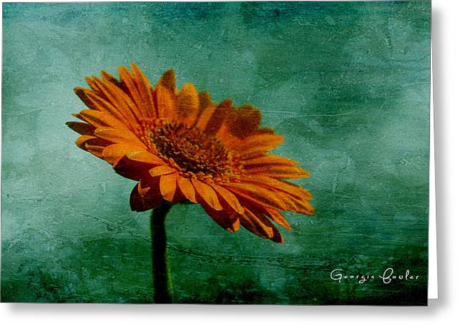 Tangerine Greeting Cards - Daisy Daisy Greeting Card by Nomad Art And  Design