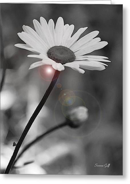 Floral Digital Art Greeting Cards - Daisy Lens Flare Greeting Card by Suzanne Gaff