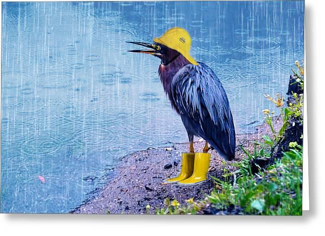 Photoshop Cs5 Greeting Cards - Damn Rain Greeting Card by Tracey Tilson