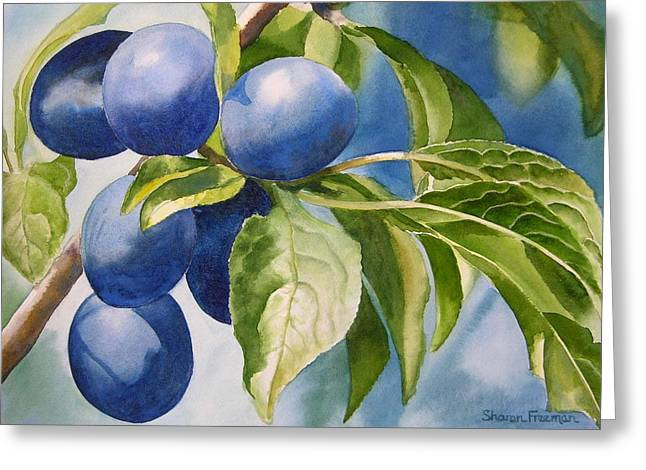 Damson Plums Greeting Card by Sharon Freeman