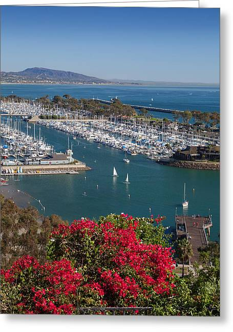 Boat Slip Greeting Cards - Dana Point Harbor Greeting Card by Cliff Wassmann
