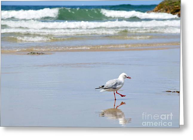 Dancing On The Beach Greeting Cards - Dancing on the Beach Greeting Card by Kaye Menner