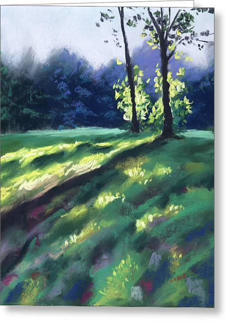 Sunlight Pastels Greeting Cards - Dancing Shadows Greeting Card by Christine Camp
