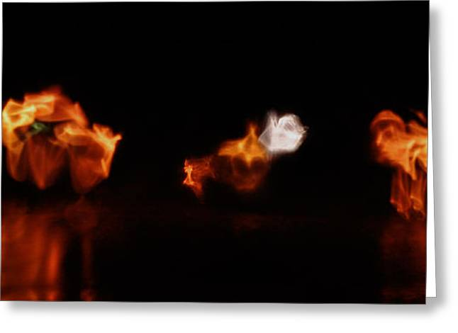 Streetlight Greeting Cards - Dancing Streetlights Greeting Card by Brian Fisher