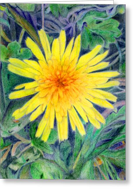 Linda Pope Greeting Cards - Dandelion Greeting Card by Linda Pope