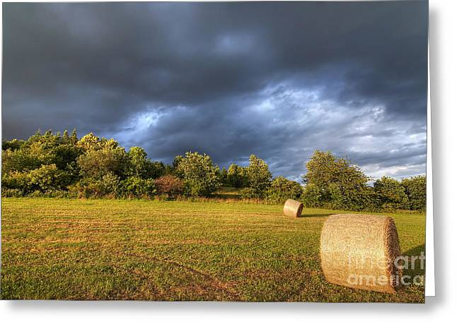 Haying Greeting Cards - Dark Clouds Before Storm Greeting Card by Michal Boubin