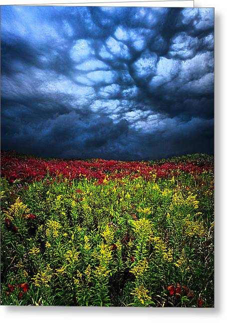 Geographic Greeting Cards - Dark Mood Greeting Card by Phil Koch
