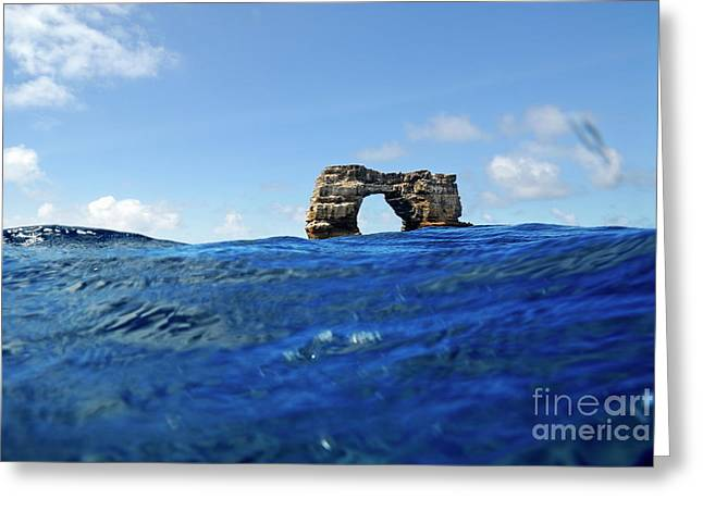 Recently Sold -  - Close Focus Nature Scene Greeting Cards - Darwins Arch by sea level Greeting Card by Sami Sarkis