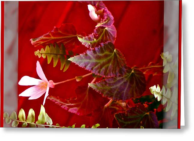 Bold Style Greeting Cards - Dash Of Red Greeting Card by Debra     Vatalaro