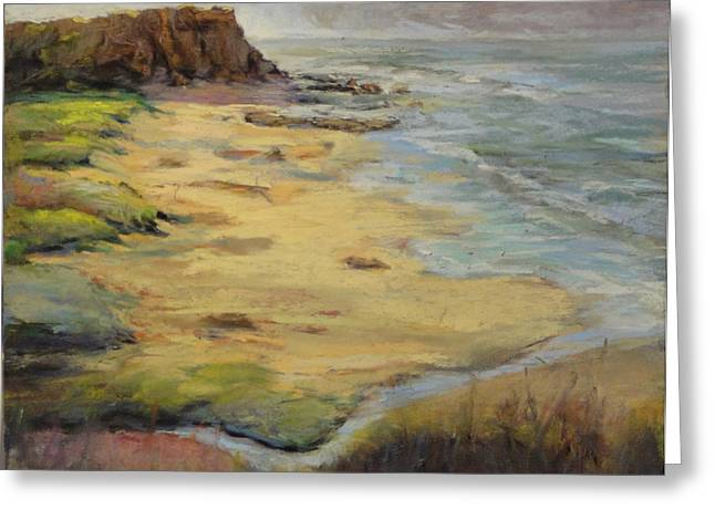 Santa Cruz Ca Greeting Cards - Davenport Landing Beach Greeting Card by Sam Pearson
