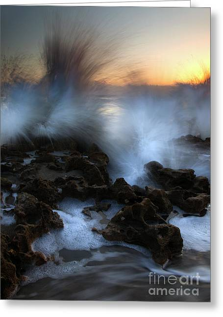 Florida Reefs Greeting Cards - Dawn Explosion Greeting Card by Mike  Dawson