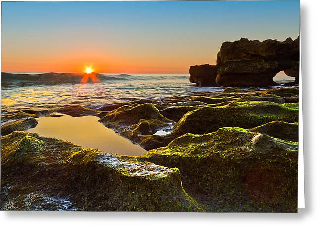 Tidal Photographs Greeting Cards - Dawn Pool Greeting Card by Debra and Dave Vanderlaan