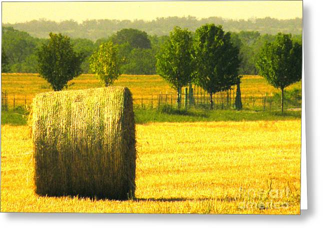 Hay Bales Greeting Cards - Day Is Done Greeting Card by Joe Jake Pratt