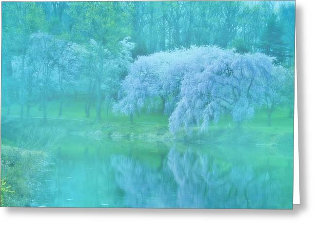 Foggy Day Greeting Cards - Daydream - Holmdel Park Greeting Card by Angie Tirado