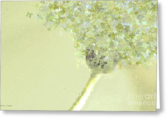 Soft Colour Greeting Cards - Daydream Daisy in Green Greeting Card by Jayne Logan Intveld