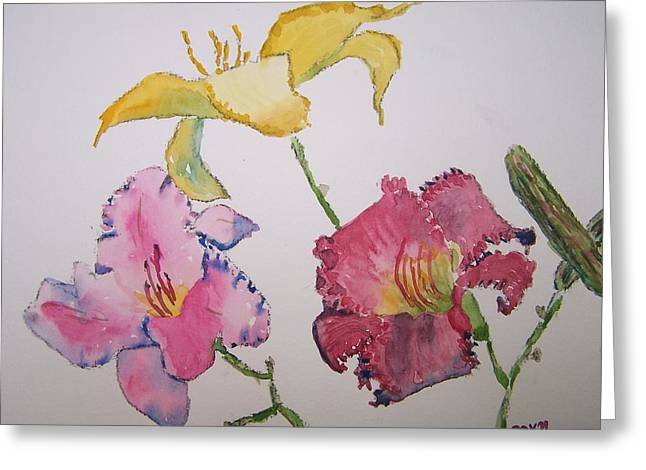 Day Lilly Greeting Cards - Daylillies Greeting Card by James Cox