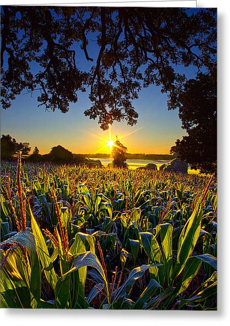 Farming Greeting Cards - Days and Days Greeting Card by Phil Koch