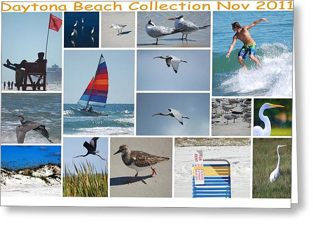 Beach Photos Digital Greeting Cards - Daytona Beach Collection 2011 Greeting Card by David Lane