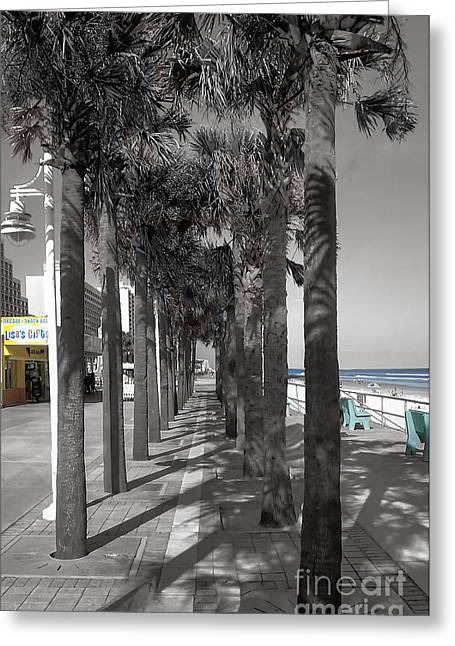 Ocean Art Photos Greeting Cards - Daytona Path Greeting Card by Raymond Earley