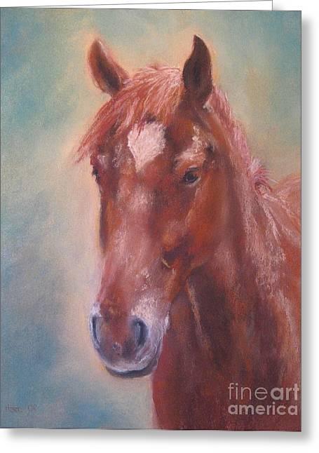 Stallion Pastels Greeting Cards - De Vito Greeting Card by Sabina Haas