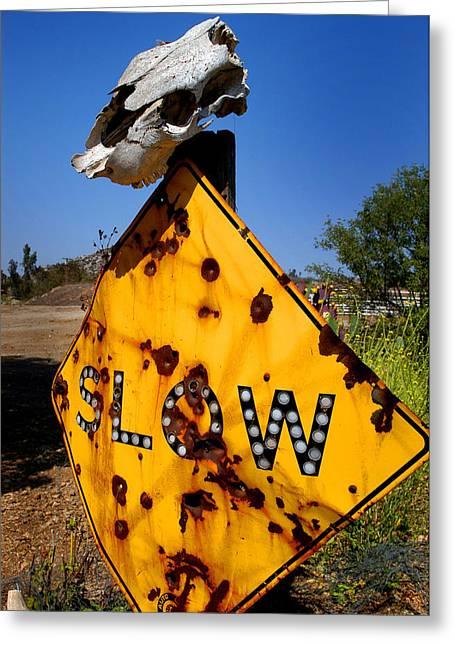 Cow Greeting Cards - Dead End Greeting Card by Craig Incardone