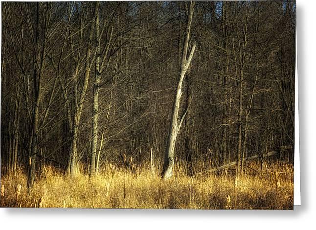 Moody Dusk Framed Prints Greeting Cards - Deadwood Napanee Greeting Card by John Herzog