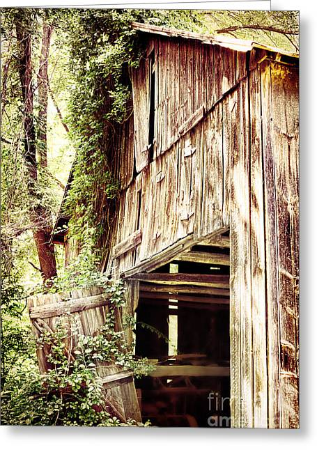 Falling Apart Greeting Cards - Decaying Barn Greeting Card by HD Connelly