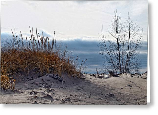 York Beach Greeting Cards - December Dune Greeting Card by Peter Chilelli