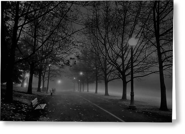 Tree Limbs Greeting Cards - DECEMBER MORNING in RIVERFRONT PARK - SPOKANE WASHINGTON Greeting Card by Daniel Hagerman