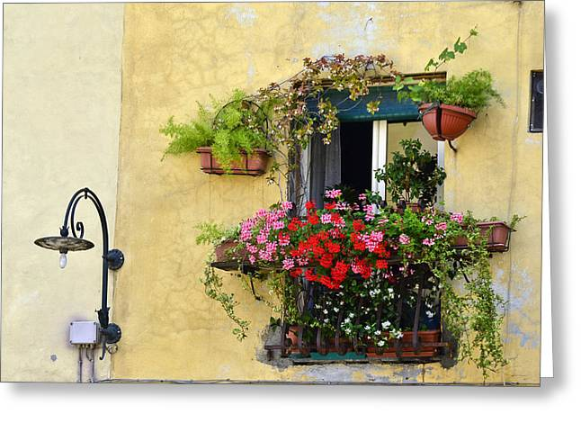 Bauwerk Greeting Cards - Decorated Window  Greeting Card by Travel Images Worldwide