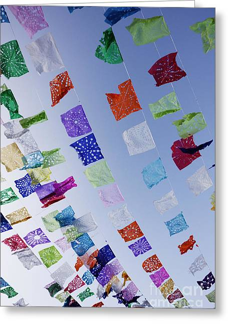 Miguel Art Greeting Cards - Decorative Streamers Greeting Card by Jeremy Woodhouse