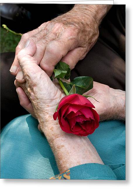 Senior Citizens Greeting Cards - Deep Abiding Love Greeting Card by Larry Landolfi