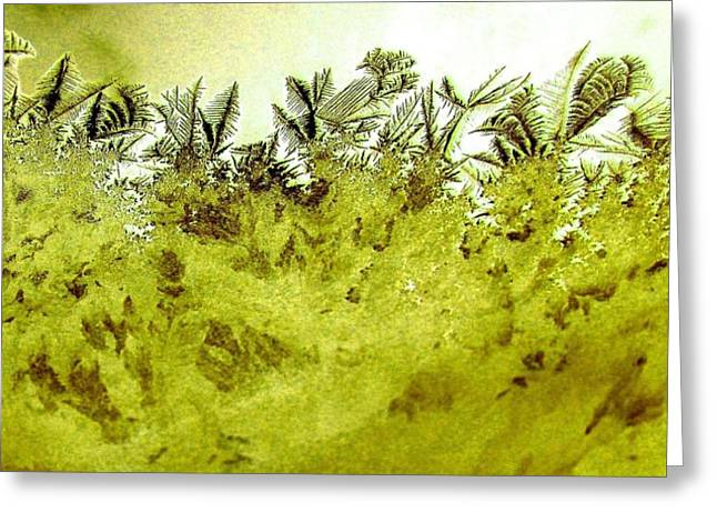 Winter Photos Greeting Cards - Deep In The Amazon Greeting Card by Will Borden