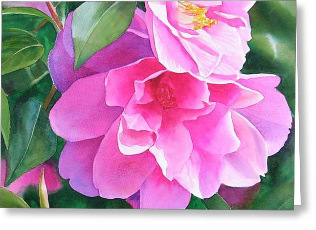 Deep Pink Camellias Greeting Card by Sharon Freeman