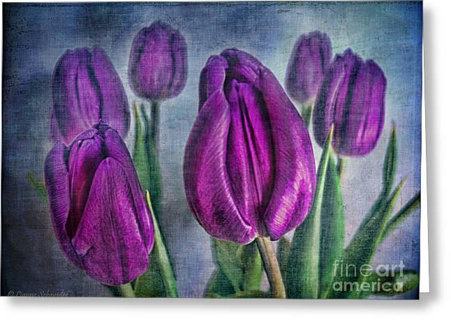 Purple Tulips Greeting Cards - Deep Purple Greeting Card by Lianne Schneider