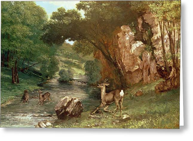 Gustave (1819-77) Greeting Cards - Deer by a River Greeting Card by Gustave Courbet