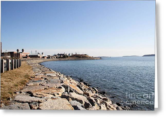 Winthrop Greeting Cards - Deer Island Trail Greeting Card by Extrospection Art