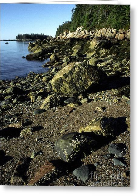 Deer Isle And Barred Island Greeting Card by Thomas R Fletcher