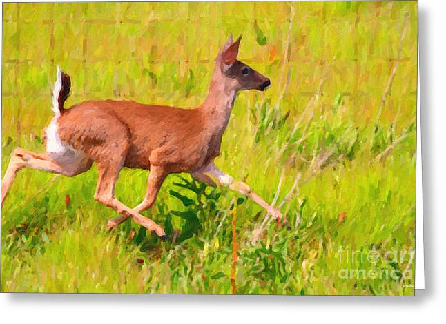 Deer Prancing In The Field Greeting Card by Wingsdomain Art and Photography